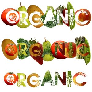 Tips on Saving Money When Buying Organic Products