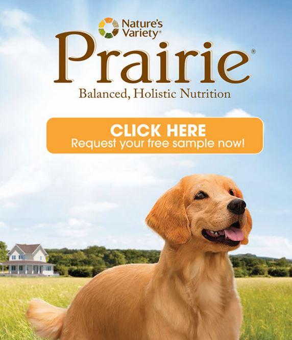 prairie dog food sample