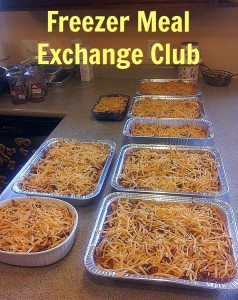 Freezer Meal Exchange Club! Create Your Own!