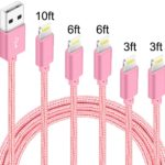 Set of 5 Lightning Cables Only $8.00!