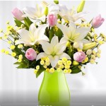 Proflowers Deal: $30 worth of Flowers for $13.00!