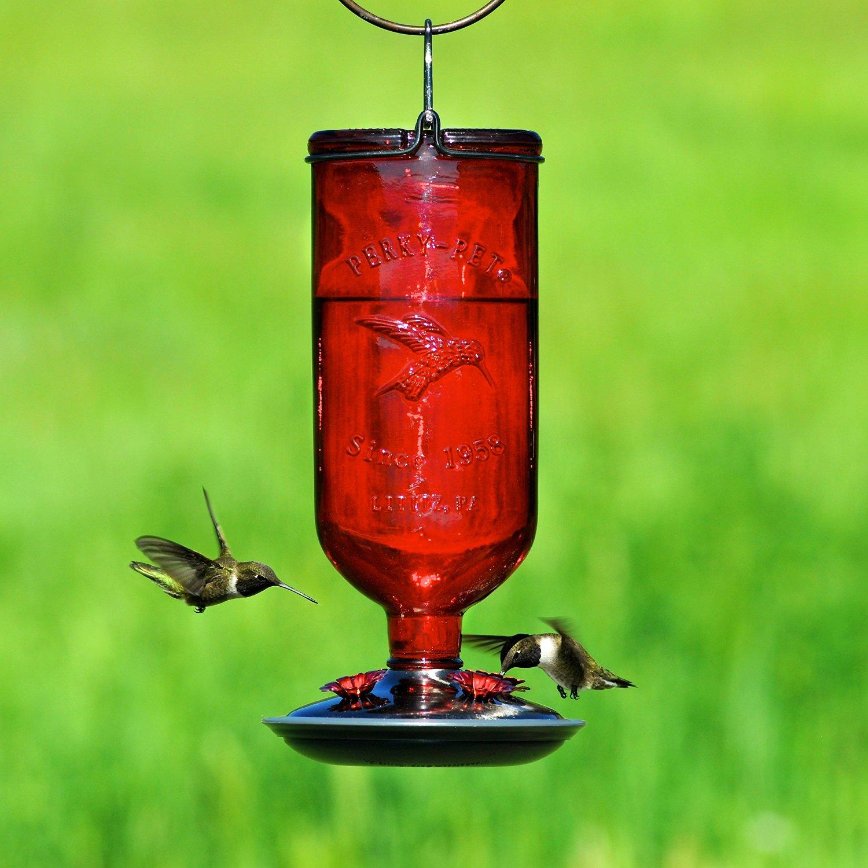 perky pet antique glass bottle hummingbird feeder only 9. Black Bedroom Furniture Sets. Home Design Ideas