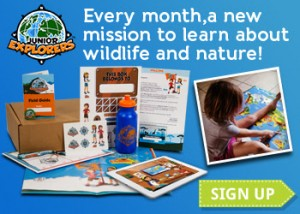 Help Your Kids Explore and Discover Wildlife and Nature with Junior Explorers!