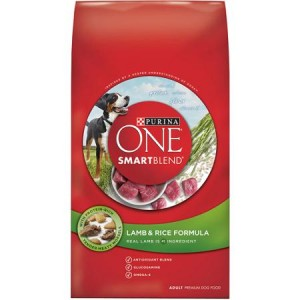 Target: Purina ONE Dog Food Only $5.40! (reg. $11.99)