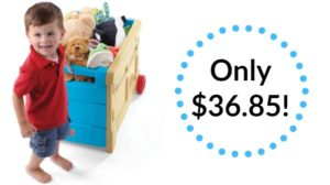 Step2 Lift and Roll Toy Box Only $36.85! (reg. $49.99)