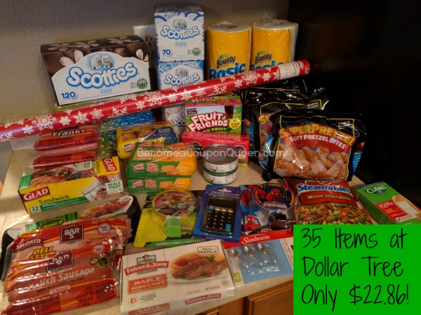 Dollar Tree Shopping Trip – 35 Items Only $22.86!