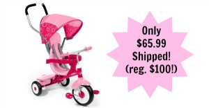 Radio Flyer 4-in-1 Trike in Pink Only $65.99 Shipped! (reg. $100)