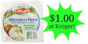 Kroger: Galbani Mozzarella Fresca as low as $1.00!