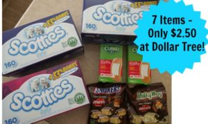 Dollar Tree Shopping – 7 Items Only $2.50!