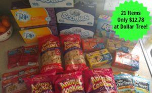 Dollar Tree Shopping – 21 Items Only $12.78!