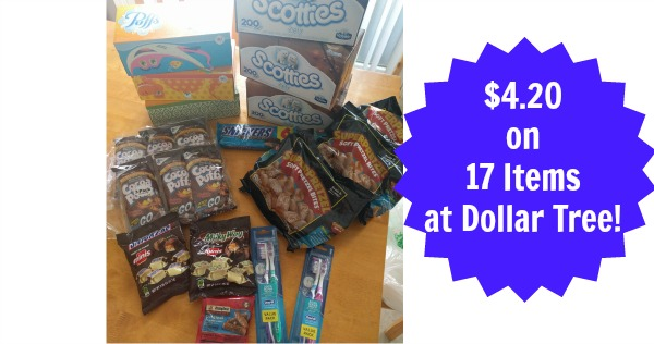 Dollar Tree: 17 Items for only $4.20!