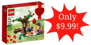 Lego Romantic Valentine Picnic Set Only $9.99!
