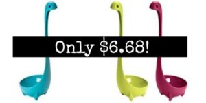 Set of 3 Ladles Only $6.68!