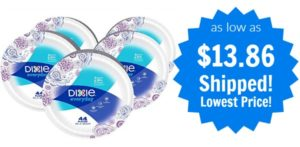 Dixie Everyday Paper Plates 220ct as low as $13.86 Shipped!