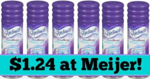Meijer: Skintimate Shave Gel Only $1.24!