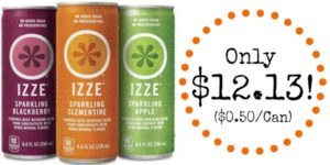 IZZE Sparkling Juice 24-Pack as low as $0.50 per Can SHIPPED!