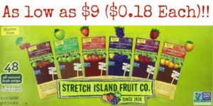 Stretch Island Fruit Leather Variety Pack 48-Count as low as $9 ($0.18 Each)!