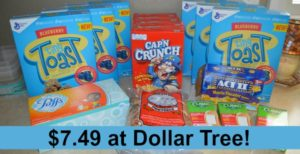 Dollar Tree Shopping – 16 Items Only $7.49!