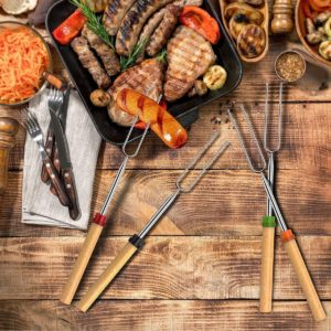 Set of 10 Roasting Sticks Only $2.99 + FREE Shipping!