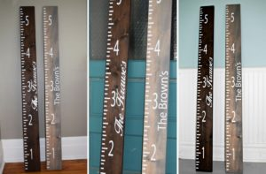 Growth Ruler – Complete Set – $49.98 Shipped!