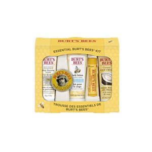 Burt's Bees Essential Everyday Beauty Gift Set as low as $5.77!!