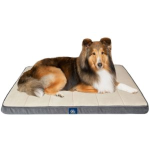 Serta Orthopedic Crate Mat with Memory Foam Quilted Sleep Surface – $19.88! (was $42.53!)