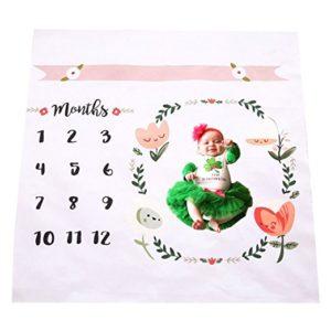 Monthly Newborn Milestone Blanket Only $7.79!