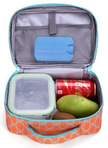 Cute Orange and Blue Lunch Box Only $8.50!
