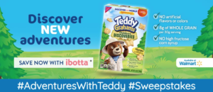Adventures with Teddy Sweepstakes – Enter to Win!