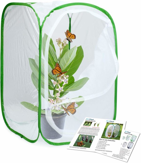 Insect and Butterfly Habitat Pop-Up Terrarium
