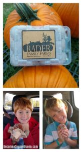 Rader Family Farms – Normal, IL