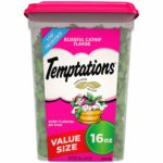 TEMPTATIONS Cat Treats 16 oz. Container as low as $4.90!