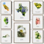 State Flower Map Canvas Prints Only $5.44!