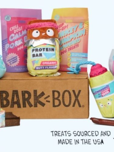 BarkBox Deals – Get DOUBLE Your First Box (4 Treats, 4 Toys, 2 Chews)!!